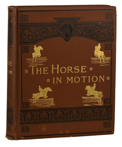 The Horse in Motion ~ Eadweard Muybridge ~ First Edition 1872 ~ 1st Film History