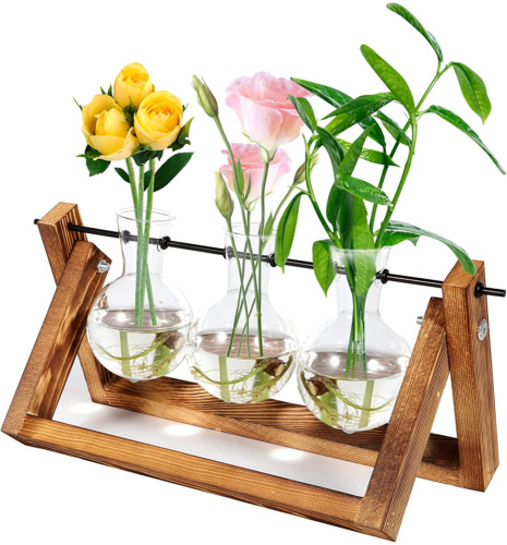 Plant Terrarium with Wooden Stand Air Planter Bulb Glass Vase for Hydroponics