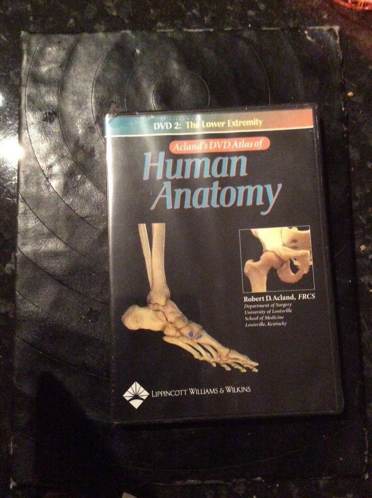 Best Atlas Of Anatomy deals | Compare Prices on dealsan.co.uk
