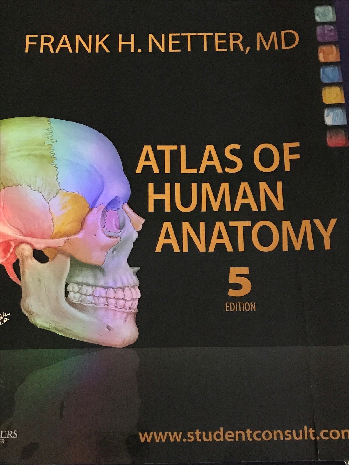 Best Atlas Of Human Anatomy Netter Deals Compare Prices On Dealsan