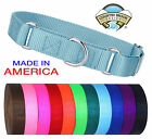 Country Brook Martingale Heavyduty Nylon Dog Collar (Various Sizes & Colors)