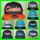 BRAND NEW FLAT PEAK VINTAGE CHARLOTTE SNAPBACK BASEBALL CAP WITH TAGS