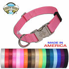 Premium Nylon Dog Collars (Various colors & sizes available!!)