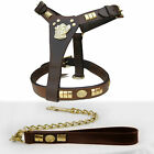 QUALITY LEATHER STAFF DOG FACE HARNESS WITH BRASS CHAIN LEAD SET IN 8 COLORS