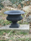 "8"" Cast Iron Celia Urn Planter, Great Centerpiece pot for Weddings"