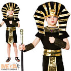 Egyptian Pharaoh Boys Fancy Dress Up Historical Egypt Childs Kids Costume Outfit