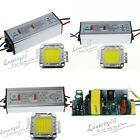 20W/30W/50W LED Driver Supply AC 95-240V+20W/30W/50W Cool White LED Chips Bead