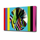 EZ0911 LARGE CIRCLE RAINBOW ZEBRA CANVAS PRINT