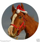 "CHRISTMAS Horse in Santa Hat  24 x 2""or Large 7.5 Edible Cake Topper Rice Paper"