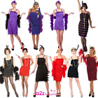 Ladies Flapper Jazz 20s 30s Fringe Chicago Moll Showtime Fancy Dress Costume