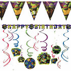 Teenage Mutant Ninja Turtle Birthday Party Decorations Banner Bunting Garland