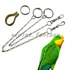 Tiger Cockatiels Peony Pet Parrot Birds Foot Metal Fission Chain Toys New