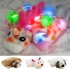 Dazzle Pets, Light up Plush Pillow for Kids - 4 Fun Styles!