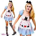 Alice In Zombieland Adult Ladies Costume Halloween Zombie UK Sizes 6-24