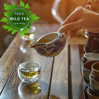 The World's Purest Wild Green Tea: Wild Ancient Tree Green Tea