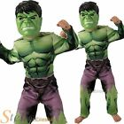 Boys Incredible Hulk Marvel Avengers Halloween Superhero Fancy Dress Costume