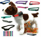 """Electric Fence Nylon Replacement Dog Strap 3/4"""" 2 Hole 1.25"""""""
