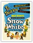Snow White and the Seven Dwarfs Vintage Fim Movie Art Pos...
