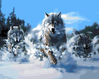 Painting by Number kit Wolf Brothers Running In Snow Forest Wild Animal BB7438