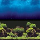 Vepotek Aquarium Background Double sides (Deep Sea/Water Plants)Fresh/Salt Water