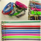 PVC Dog Collar - 25mm wide Solid Brass or Stainless Steel fittings