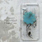 PHL Disegno Pressed Bling Blue Dry Flower Case For iPhone 7 Plus Samsung Note