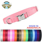 Country Brook Design Premium Nylon Dog Collars Various colors  sizes available