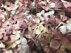 Vintage Mini Lilacs Cotton Flowers Stems Dusty Pink Shaded 1pc Made in Japan