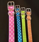 Bright Waterproof Dog Buckled Collar - 100% of SALE BENEFITS RESCUE