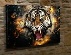 Extra Large Canvas Wall Art Picture Print Abstract Tiger Roaring  BH44
