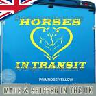 Horses In Transit Horse Box Trailer Stickers Vinyl Graphic Decals - 16 Colours