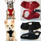 Adjustable Pet Harness. Soft Mesh Basic Lightweight. Black / Red. Size L / XL