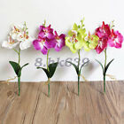 1 Pc Artificial Fake Butterfly Orchid Flower Wedding Party Home Garden Decor