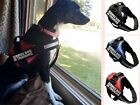 Reflective Service Dog In training Harness Vest Coat with Removable Patches