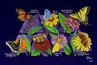 BUTTERFLY NECTAR-Garden Weeds Flowers Herbs Nature Science T Shirt NEW! 2XL ONLY
