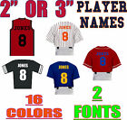 "Custom Iron On Jersey Shirt Heat Vinyl Transfer Player Name 2"" or 3"" 16 COLORS"