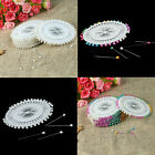 480Pcs Pearl Round Head Pins Sewing Corsage Straight DIY Dress making Hot Sale