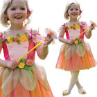 Peach Fairy Costume Fancy Dress 1.5-8 Years Girls Orange Toddler Flower Amscan