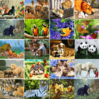 Внешний вид - 40*50CM DIY Acrylic Paint By Number Kit Oil Painting Wall Decor On Canvas Animal