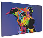Jack Russell Box Canvas and Poster Print (131)