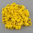 100Pcs Set Poultry Leg Pigeon Parrot Chicks Orange Rings Clip 1-100 Numbered
