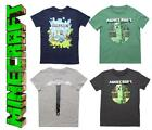 Boys Official Mojang Minecraft Assorted Creeper Steve T-Shirt Tops 4-5 Years