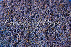 Lavender of Provence breathing culinary cooking edible dried flower buds 3 4 6 8oz