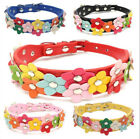 Fashion High Quality Double Row flowers Leather Pet Cat Dog Collar Neck Strap