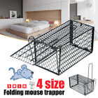 Rat Trap Cage Small Live Animal Pest Rodent Mouse Control Bait Catch Multi-Sizes