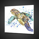 TURTLE ABSTRACT CANVAS PICTURE PRINT WALL ART HOME DECOR FREE DELIVERY