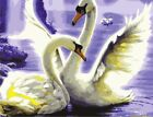 Oil Painting DIY Acrylic Paint By Number Kit Canvas Art Home Wall Decor Animals