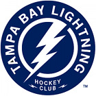 Tampa bay Lightning vinyl sticker for skateboard luggage laptop tumblers car $7.99 USD on eBay