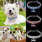 Crystal Dog Bone Fancy Collars Small Bling Dog Collar Dog Puppy Necklace S M L