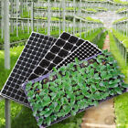 72/105/128 Cell Seedling Starter Tray Seed Germination Plant Propagation RS